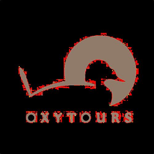 Oxytorus logo